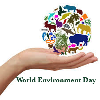 World Environment Day -Grade XII